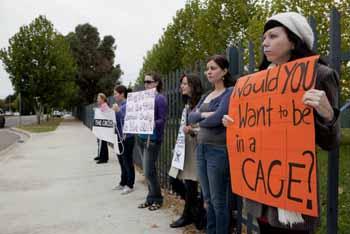 世界中で行われている、サーカスにおける動物虐待に抗議する動物愛護団体の活動(photo: U3070695)